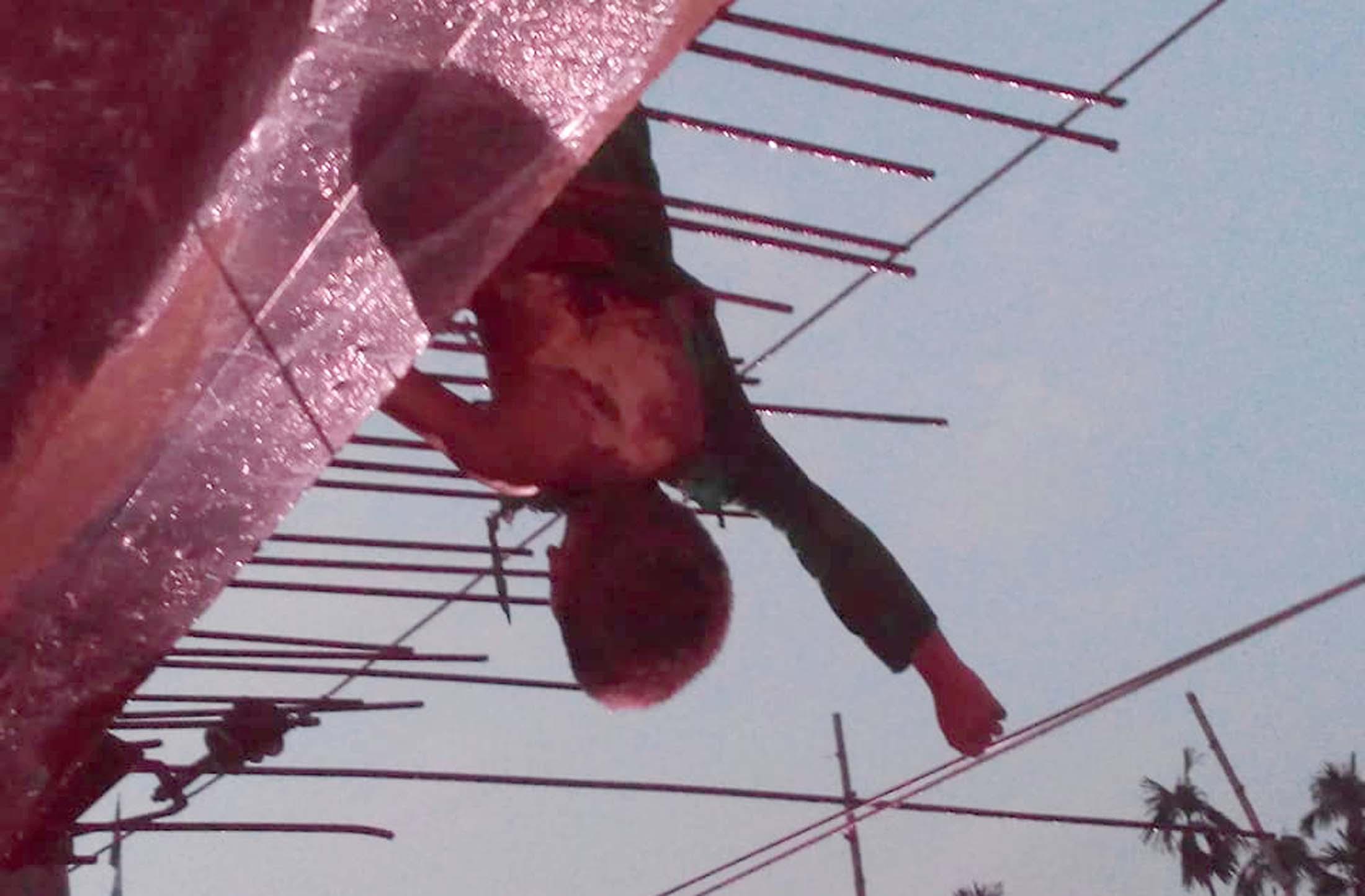তুষখালীতে বিদ্যুৎ স্পর্শে শিশু ওমর ফারুকের মর্মান্তিক মৃত্যু ॥ দমকল বাহিনীর নির্মাণাধীন ভবন থেকে লাশ উদ্ধার