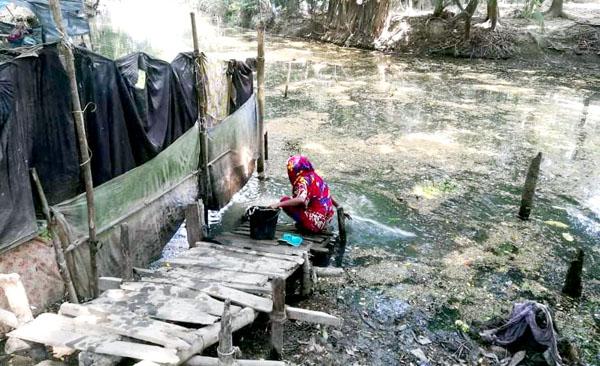 বাগেরহাটের গোলাবুনিয়া খালটি দখল-দুষনে মৃত! এলাকাবাসী চরম দুর্ভোগে
